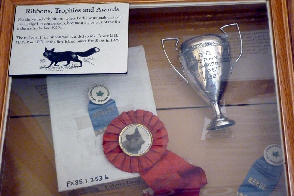International Fox Museum / Musée international du renard