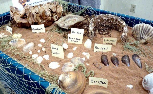 Prince Edward Island Shellfish Museum /